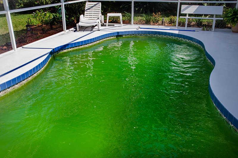 зеленый бассейн подвал
